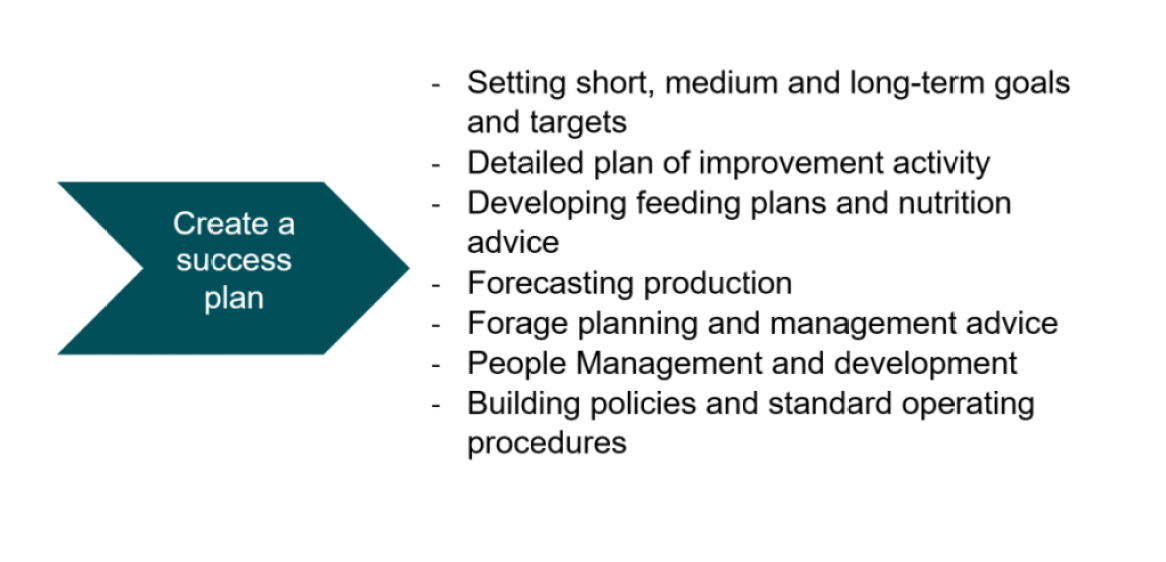 -Setting short, medium and long-term goals and targets  -Detailed plan of improvement activity  -Developing feeding plans and nutrition advice -Forecasting production  -Forage planning and management advice -People Management and development -Building policies and standard operating procedures