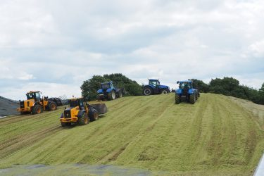 Rolling the silage clamp